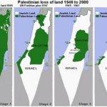 Dovada crimelor de razboi din Gaza. Un ziarist acuza: Israelul a folosit deliberat fosfor alb si bombe cu fragmentatie asupra civililor palestinieni