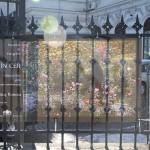 "Singura zi in care mai puteti vizita expozitia de la Palatul Sutu ""Precum in cer asa si pe pamant"" a fotografei Cristina Nichitus Roncea"