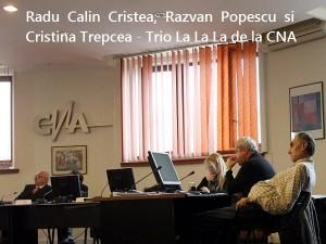 Radu Calin Cristea, Razvan Popescu si Cristina Trepcea la CNA 27.02.2014