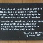 Comemorarea Sfantului Inchisorilor Valeriu Gafencu la Cimitirul din Targu Ocna – 16 Februarie 2013. FOTO/VIDEO